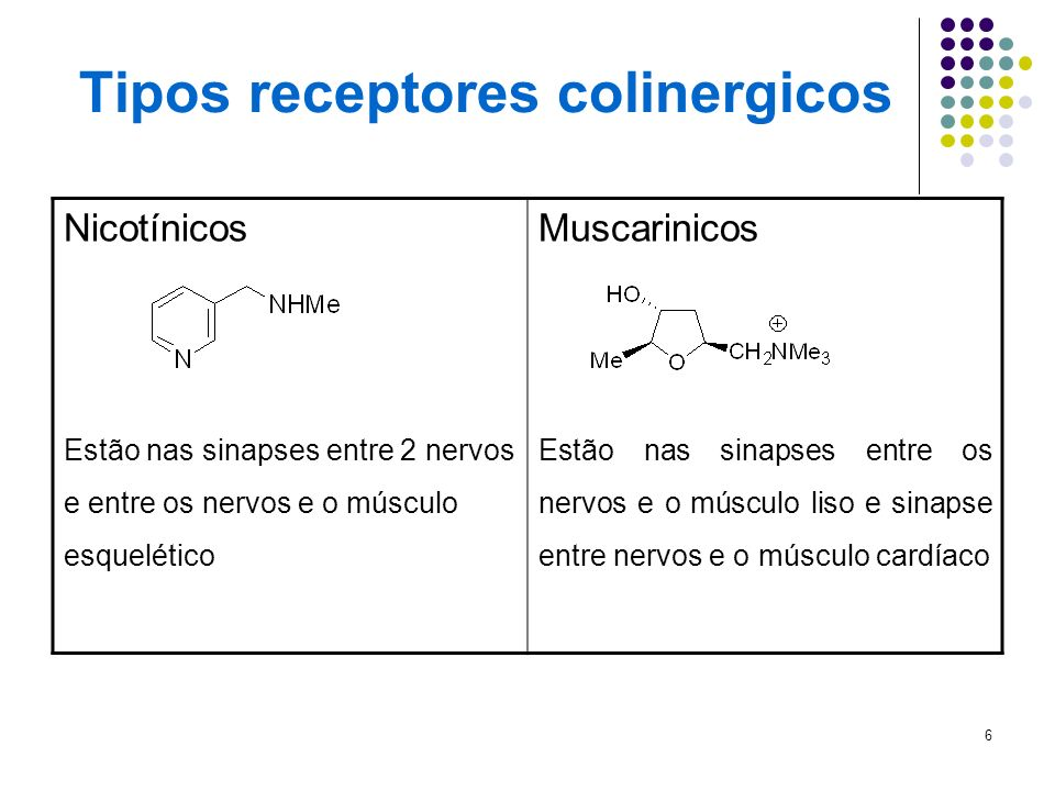 6 Tipos receptores colinergicos Nicotínicos Estão nas sinapses entre 2 nervos e entre os nervos e o músculo esquelético Muscarinicos Estão nas sinapse