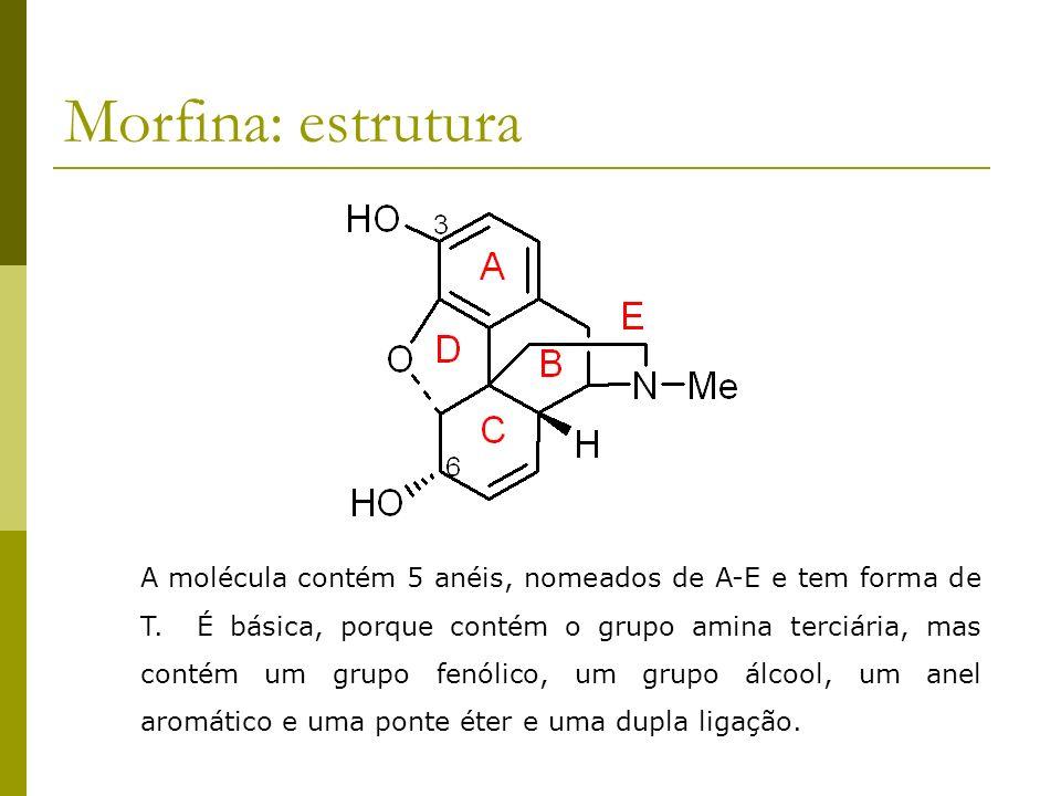 Morfina: estrutura A molécula contém 5 anéis, nomeados de A-E e tem forma de T. É básica, porque contém o grupo amina terciária, mas contém um grupo f