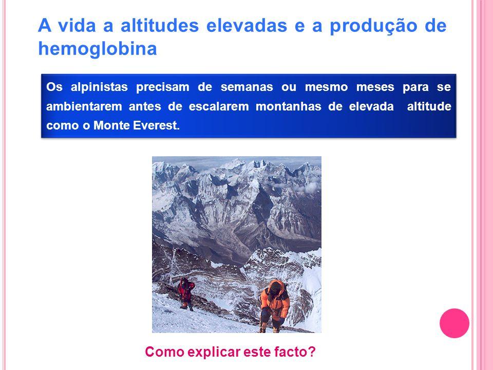 A vida a altitudes elevadas e a produção de hemoglobina Os alpinistas precisam de semanas ou mesmo meses para se ambientarem antes de escalarem montan