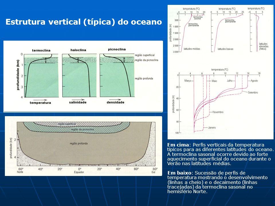 Estrutura vertical (típica) do oceano Em cima: Perfis verticais da temperatura típicos para as diferentes latitudes do oceano. A termoclina sasonal oc