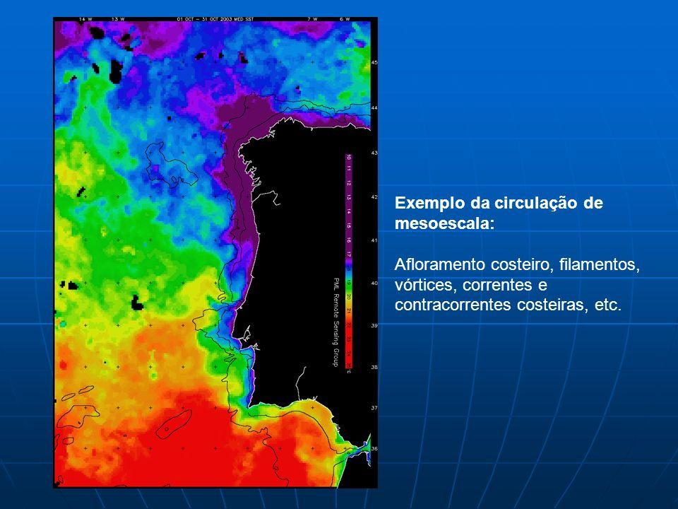 Exemplo da circulação de mesoescala: Afloramento costeiro, filamentos, vórtices, correntes e contracorrentes costeiras, etc.