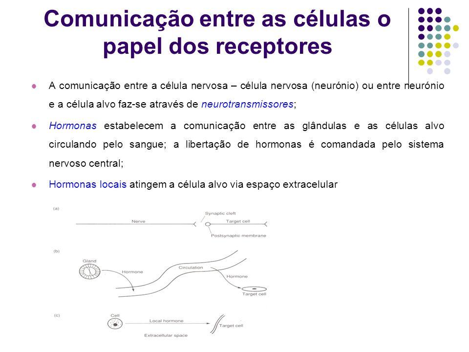 Comunicação entre as células o papel dos receptores A comunicação entre a célula nervosa – célula nervosa (neurónio) ou entre neurónio e a célula alvo