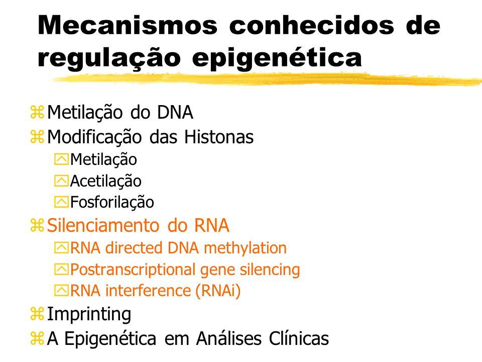Mecanismos conhecidos de regulação epigenética zMetilação do DNA zModificação das Histonas yMetilação yAcetilação yFosforilação zSilenciamento do RNA