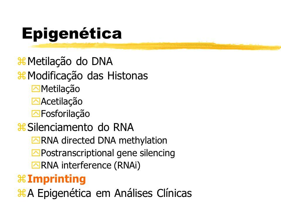 Epigenética zMetilação do DNA zModificação das Histonas yMetilação yAcetilação yFosforilação zSilenciamento do RNA yRNA directed DNA methylation yPost