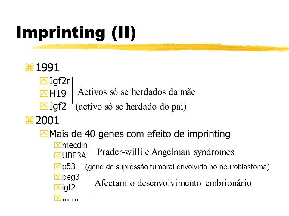 Imprinting (II) z1991 yIgf2r yH19 Igf2 (activo só se herdado do pai) z2001 yMais de 40 genes com efeito de imprinting xmecdin xUBE3A xp53 (gene de sup