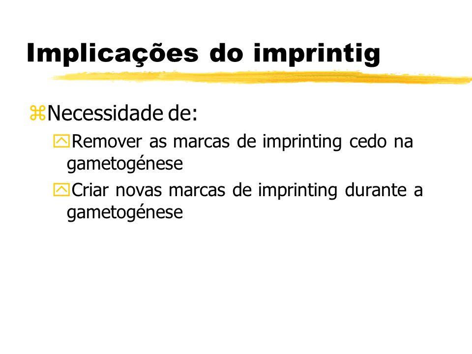 Implicações do imprintig zNecessidade de: yRemover as marcas de imprinting cedo na gametogénese yCriar novas marcas de imprinting durante a gametogéne