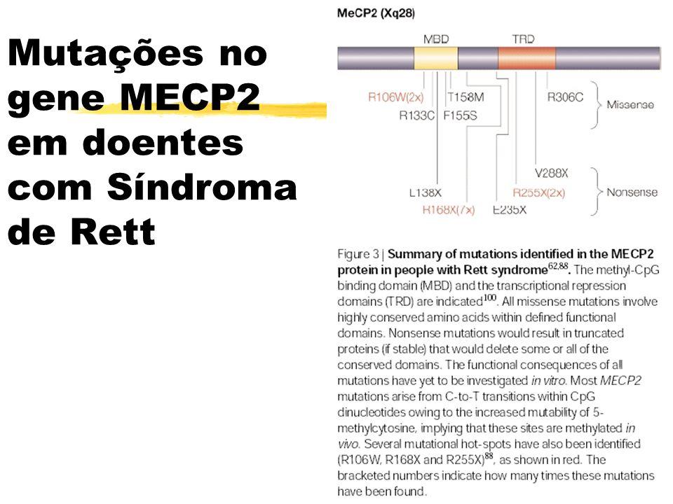 Mutações no gene MECP2 em doentes com Síndroma de Rett