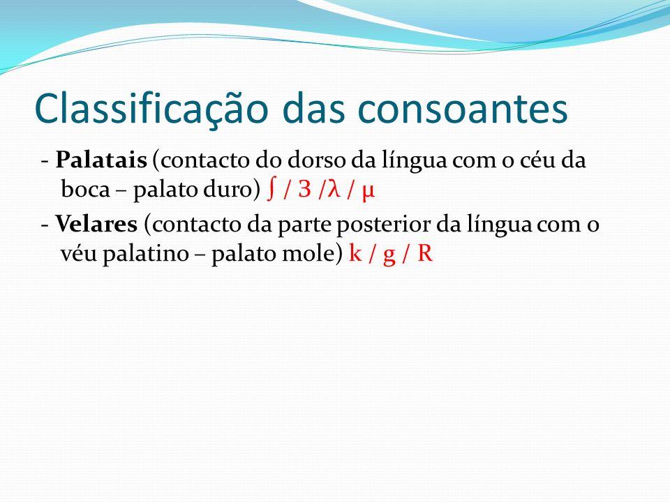 Classificação das consoantes Papel das cordas vocais: as consoantes podem ser realizadas com ou sem vibração das cordas vocais: - Surdas: p / t / k / f / s / - Sonoras: b / d / g / v / z / З / l / m / n / μ / r / R / λ Papel das cavidades bucal e nasal: as consoantes são todas orais com excepção das nasais m / n / μ