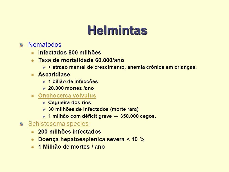 Helmintas Nemátodos Infectados 800 milhões Taxa de mortalidade 60.000/ano + atraso mental de crescimento, anemia crónica em crianças. Ascaridíase 1 bi