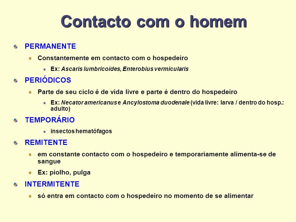Contacto com o homem PERMANENTE Constantemente em contacto com o hospedeiro Ex: Ascaris lumbricoides, Enterobius vermicularis PERIÓDICOS Parte de seu