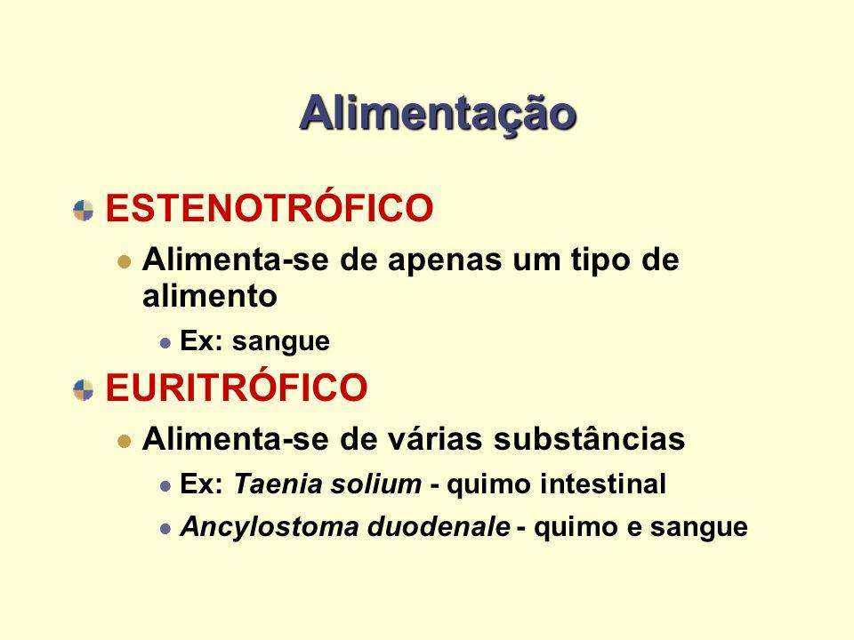 Alimentação ESTENOTRÓFICO Alimenta-se de apenas um tipo de alimento Ex: sangue EURITRÓFICO Alimenta-se de várias substâncias Ex: Taenia solium - quimo