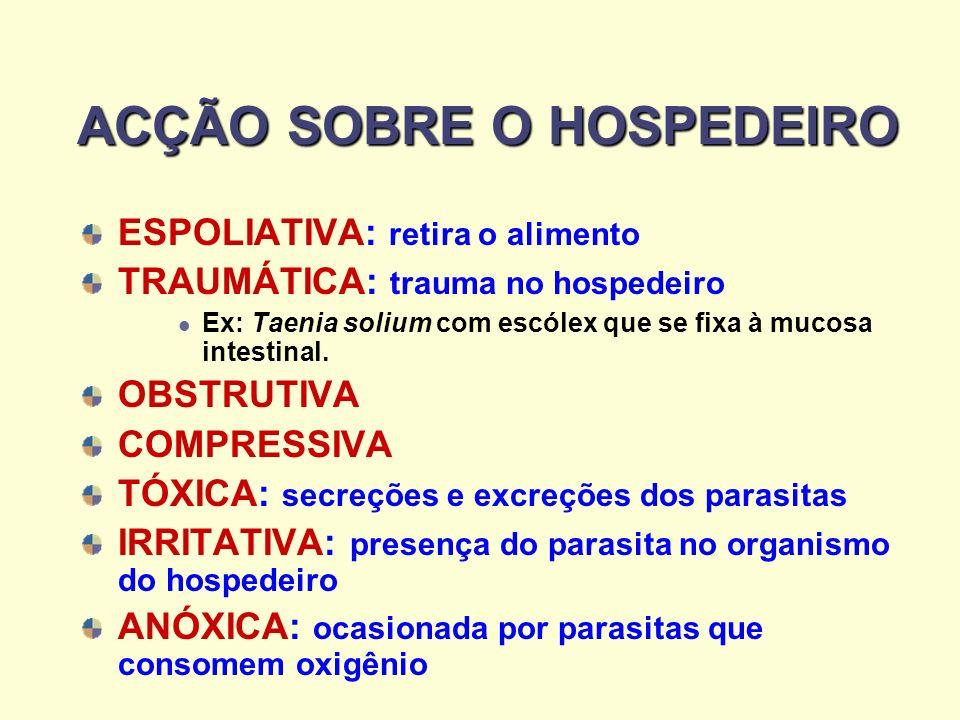 ACÇÃO SOBRE O HOSPEDEIRO ACÇÃO SOBRE O HOSPEDEIRO ESPOLIATIVA: retira o alimento TRAUMÁTICA: trauma no hospedeiro Ex: Taenia solium com escólex que se