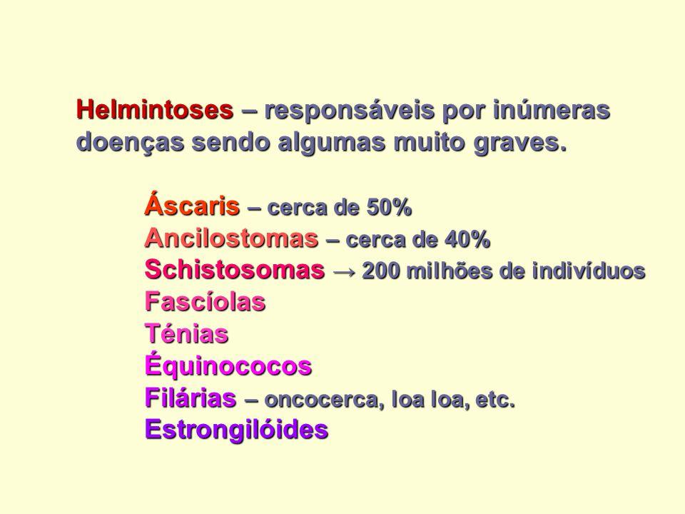 DISSEMINAÇÃO PELO ORGANISMO DISSEMINAÇÃO PELO ORGANISMO Via sanguínea: Hemoparasitas (Ex.: T.
