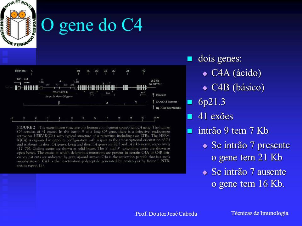 Técnicas de Imunologia Prof. Doutor José Cabeda O gene do C4 dois genes: dois genes: C4A (ácido) C4A (ácido) C4B (básico) C4B (básico) 6p21.3 6p21.3 4