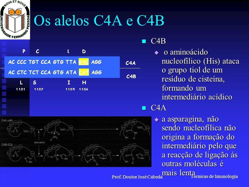 Técnicas de Imunologia Prof. Doutor José Cabeda Os alelos C4A e C4B C4B C4B o aminoácido nucleofílico (His) ataca o grupo tiol de um resíduo de cisteí