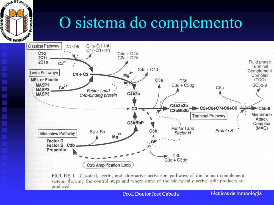 Técnicas de Imunologia Prof. Doutor José Cabeda O sistema do complemento