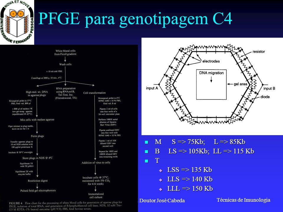 Técnicas de Imunologia Prof. Doutor José Cabeda PFGE para genotipagem C4 M S => 75Kb; L => 85Kb M S => 75Kb; L => 85Kb B LS => 105Kb; LL => 115 Kb B L