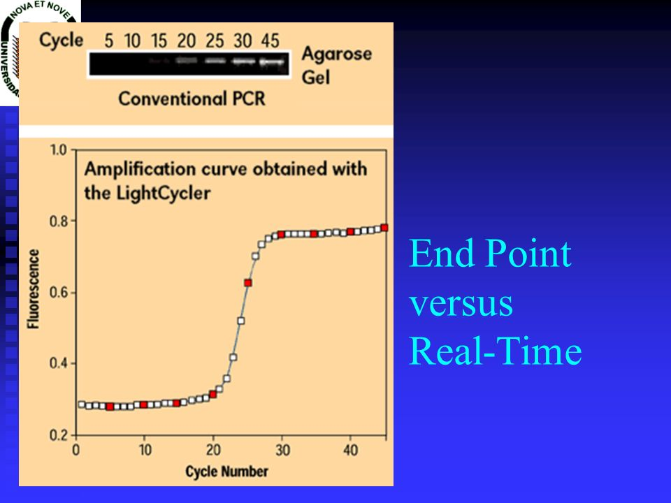End Point versus Real-Time