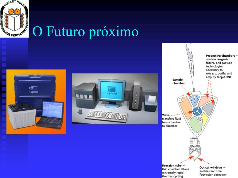 O Futuro próximo