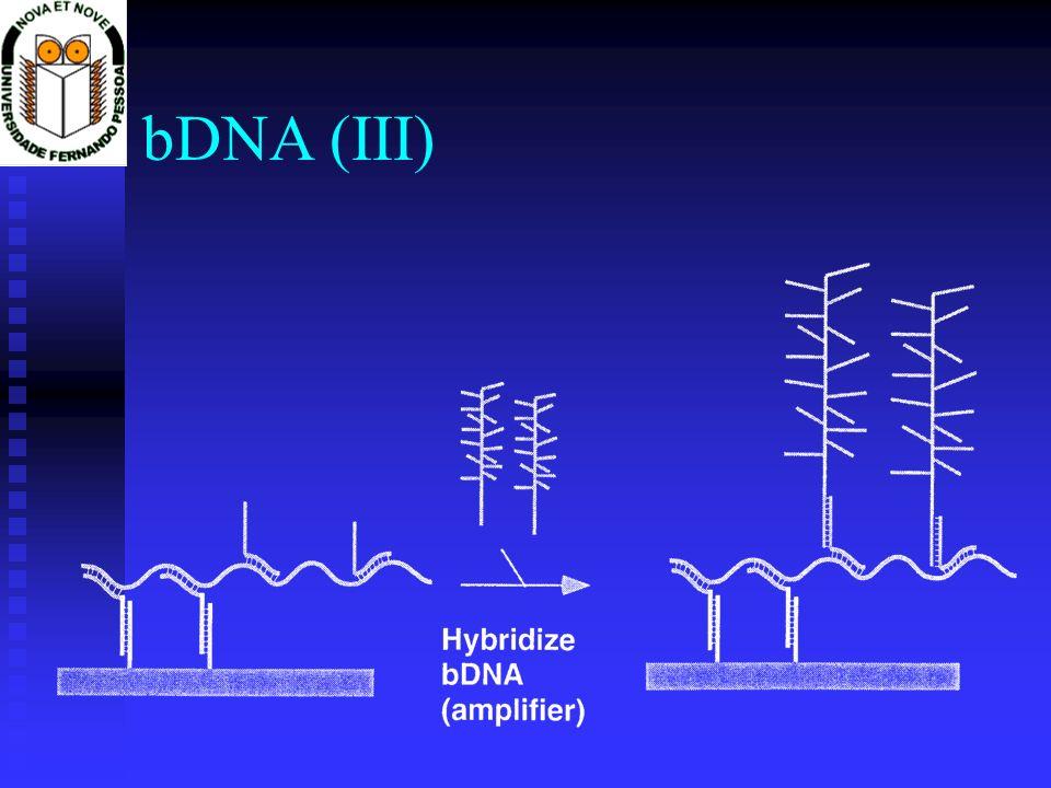 bDNA (III)