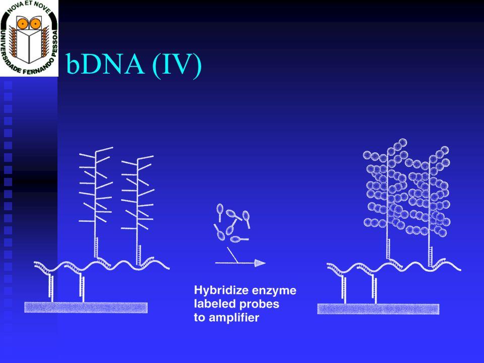 bDNA (IV)