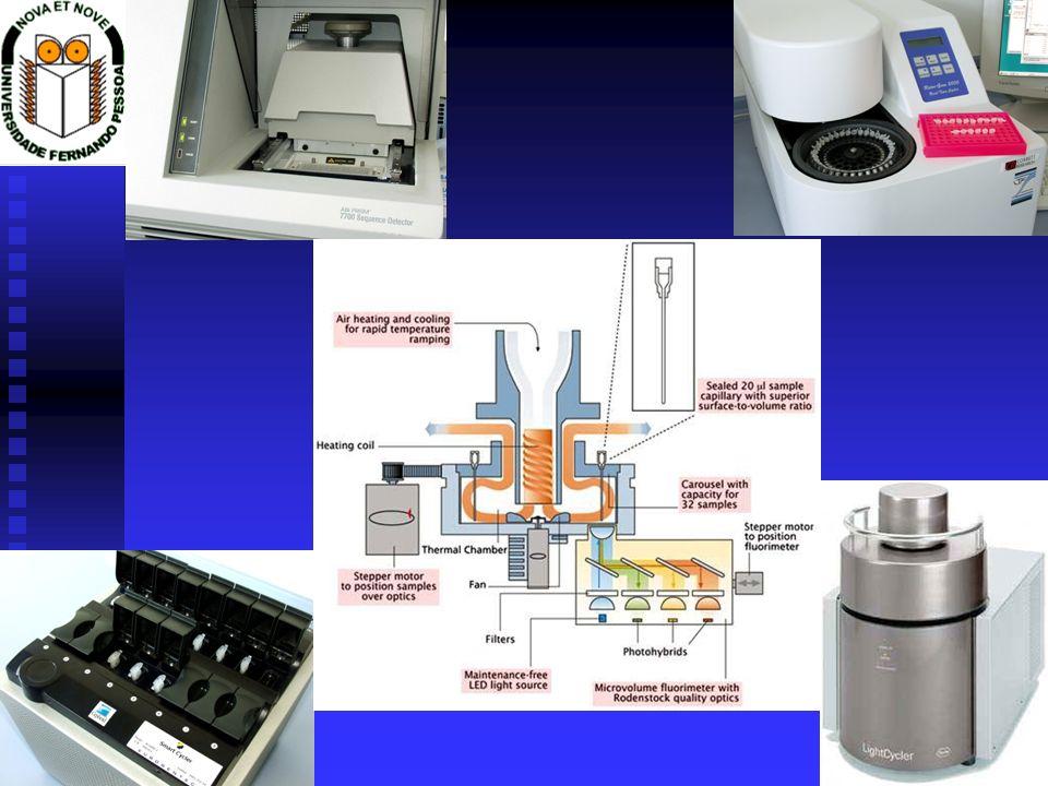 Detecção dos produtos de PCR