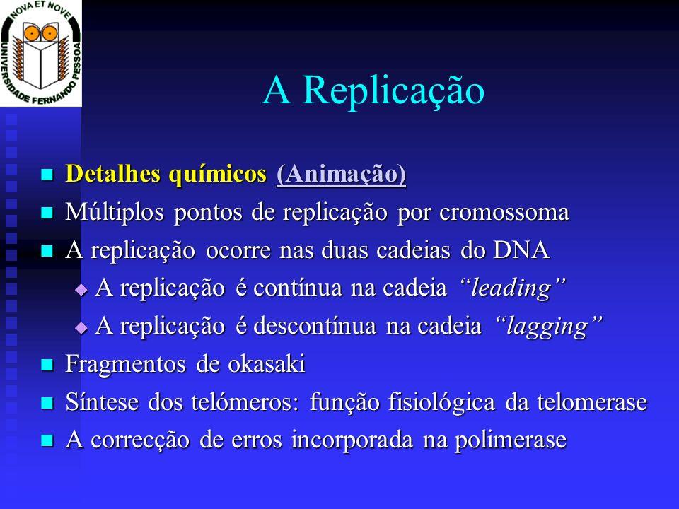 A Replicação Detalhes Químicos Detalhes Químicos Múltiplos pontos de replicação por cromossoma Múltiplos pontos de replicação por cromossoma A replicação ocorre nas duas cadeias do DNA A replicação ocorre nas duas cadeias do DNA A replicação é contínua na cadeia leading A replicação é contínua na cadeia leading A replicação é descontínua na cadeia lagging A replicação é descontínua na cadeia lagging Fragmentos de okasaki Fragmentos de okasaki Síntese dos telómeros: função fisiológica da telomerase Síntese dos telómeros: função fisiológica da telomerase A correcção de erros incorporada na polimerase A correcção de erros incorporada na polimerase