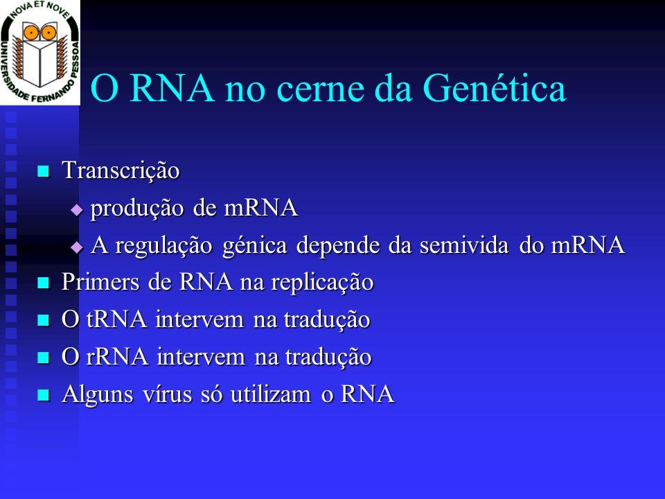 O RNA no cerne da Genética Transcrição Transcrição produção de mRNA produção de mRNA A regulação génica depende da semivida do mRNA A regulação génica
