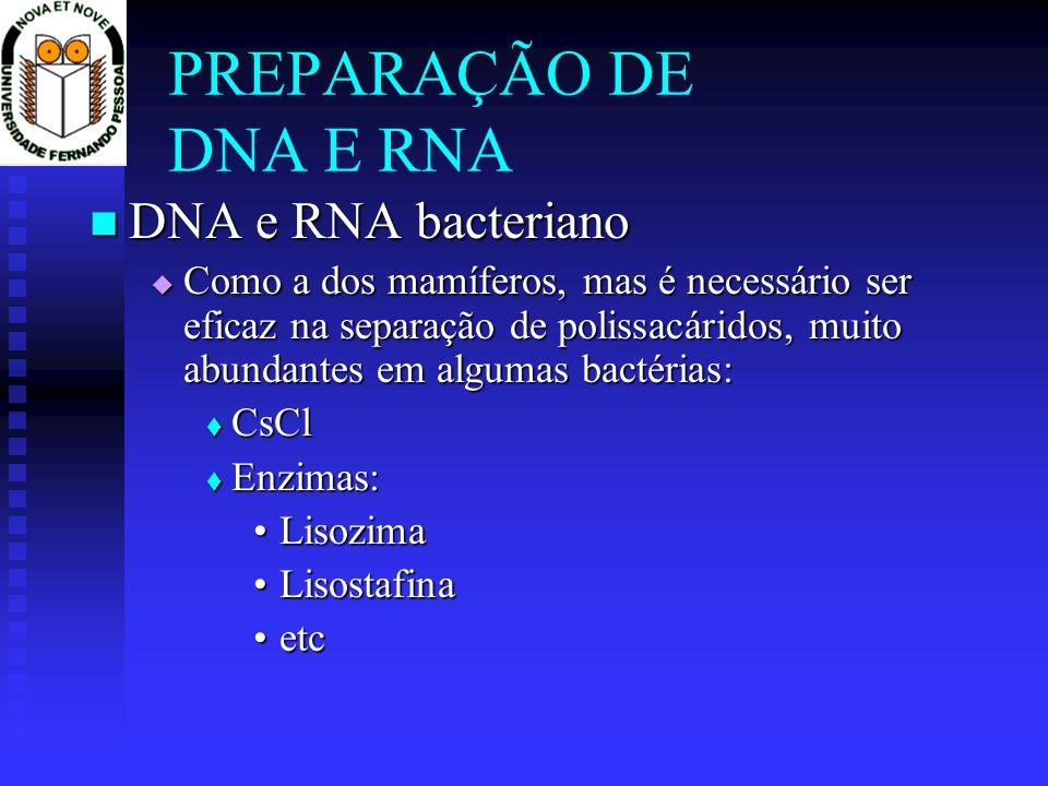 PREPARAÇÃO DE DNA E RNA DNA e RNA bacteriano DNA e RNA bacteriano Como a dos mamíferos, mas é necessário ser eficaz na separação de polissacáridos, mu