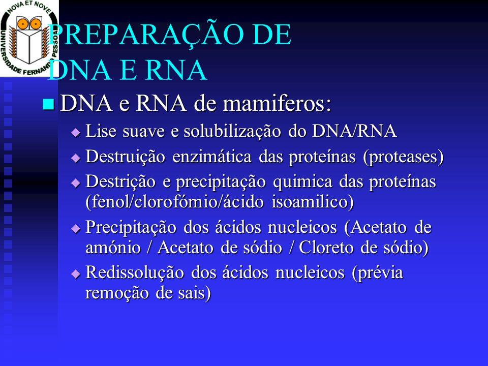 PREPARAÇÃO DE DNA E RNA DNA e RNA de mamiferos: DNA e RNA de mamiferos: Lise suave e solubilização do DNA/RNA Lise suave e solubilização do DNA/RNA De