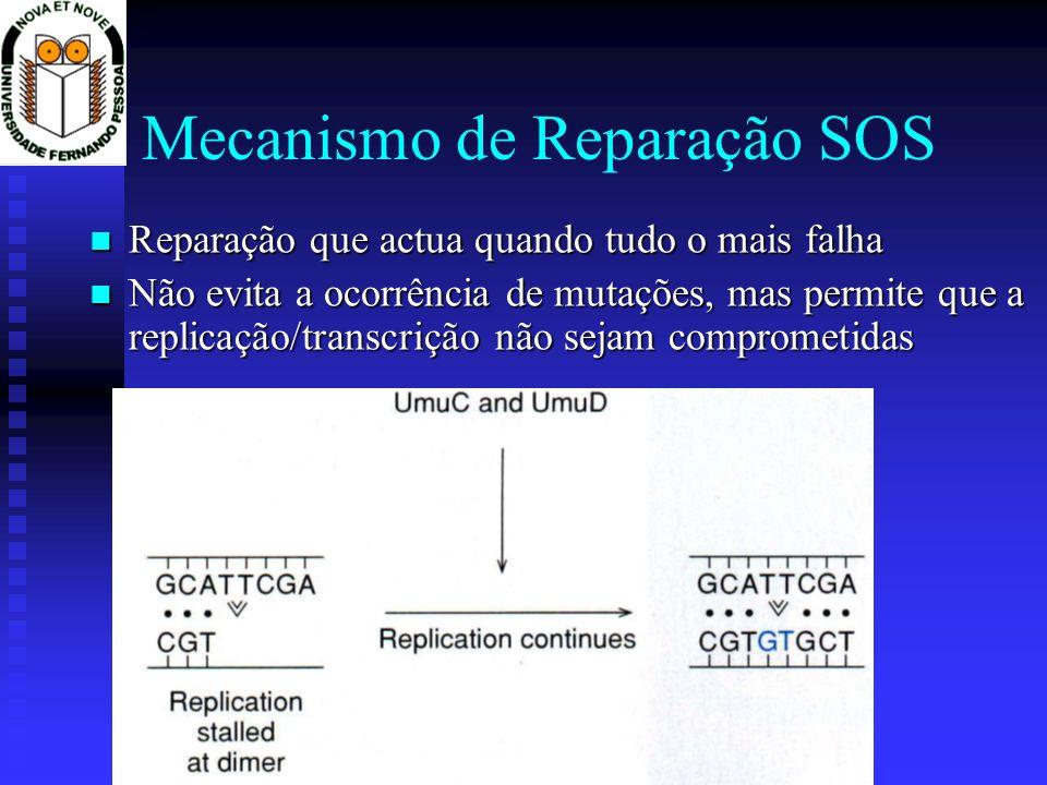 Mecanismo de Reparação SOS Reparação que actua quando tudo o mais falha Reparação que actua quando tudo o mais falha Não evita a ocorrência de mutaçõe