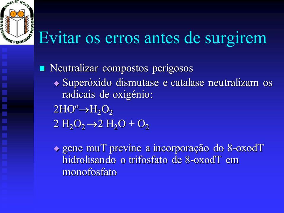Mecanismos de Reparação do DNA Não excisativos Não excisativos Evitar os erros (ex.