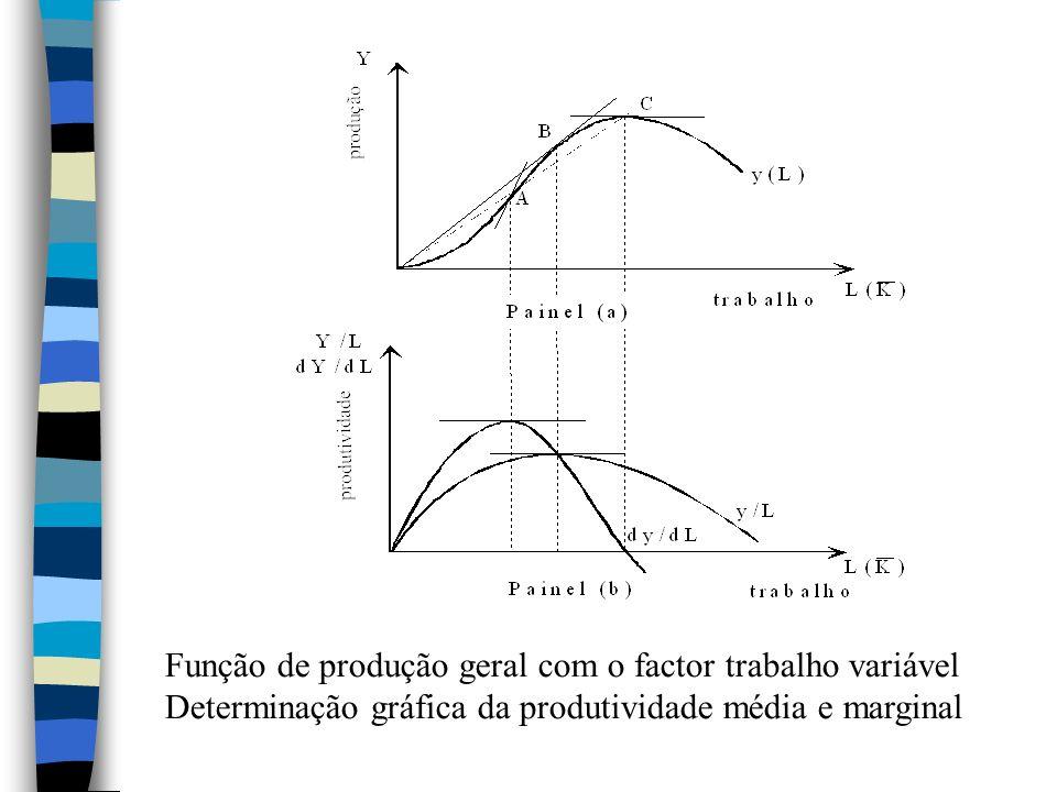 Função de produção geral com o factor trabalho variável Determinação gráfica da produtividade média e marginal
