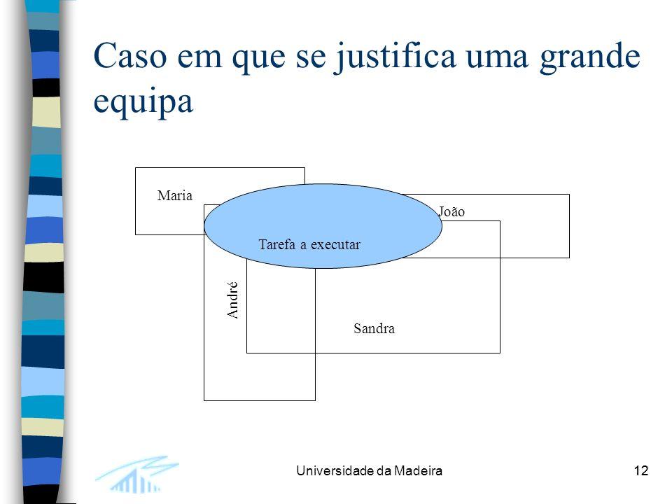 12Universidade da Madeira12 Caso em que se justifica uma grande equipa Tarefa a executar Maria João Sandra André
