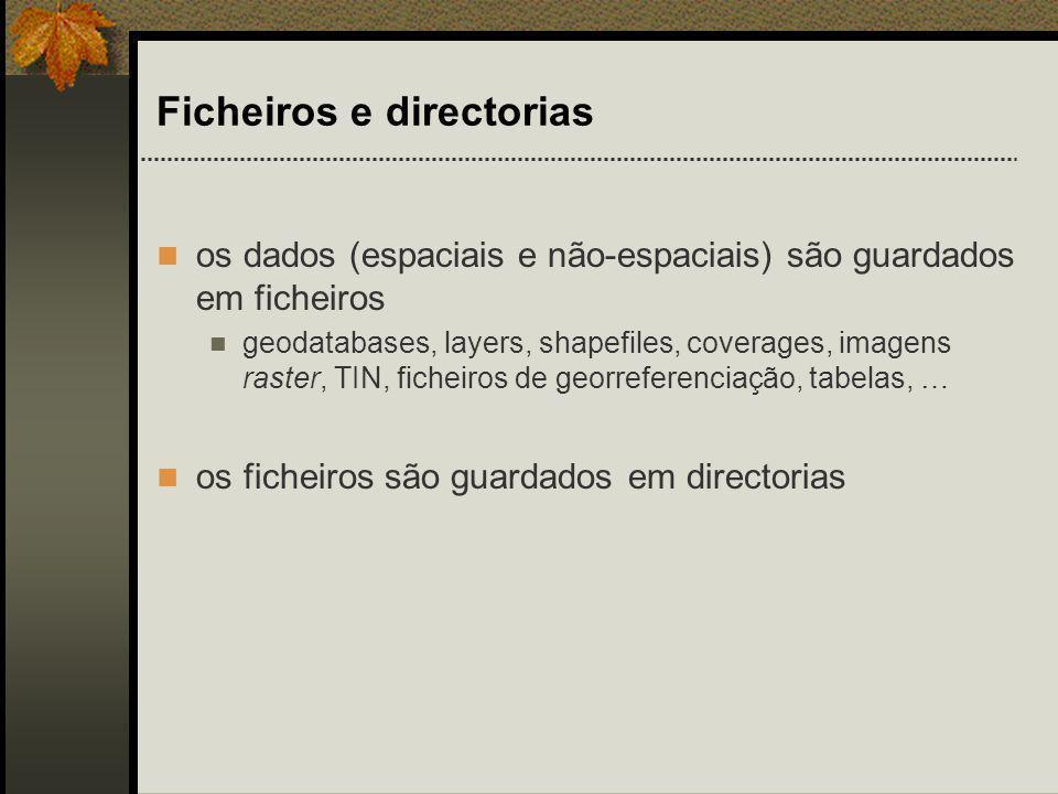 ArcCatalog Ferramenta para: pesquisar organizar distribuir documentar os dados de um SIG Qualquer directoria pode ser incluída/removida na árvore do ArcCatalog