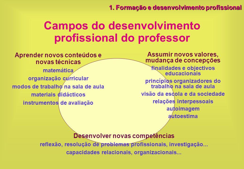 Campos do desenvolvimento profissional do professor Aprender novos conteúdos e novas técnicas matemática organização curricular modos de trabalho na s