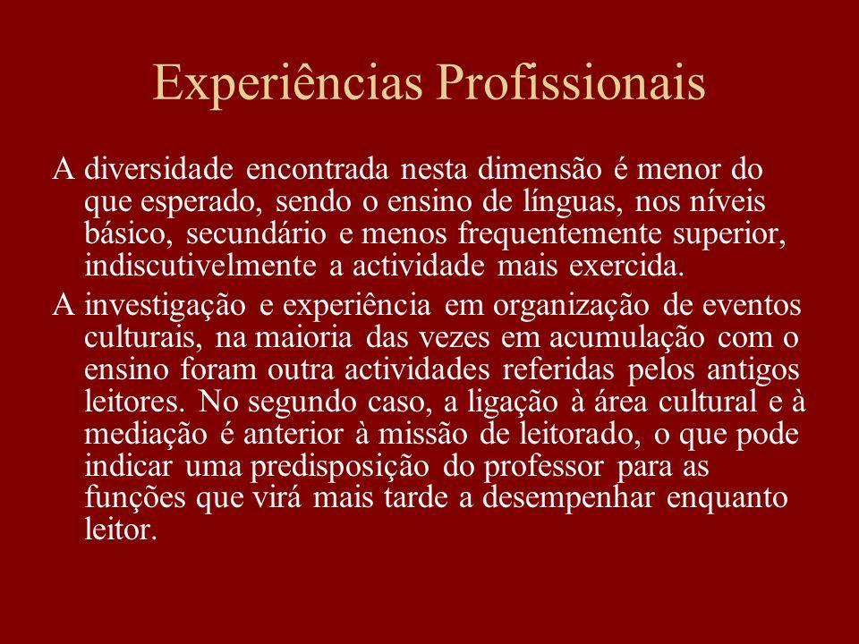 Experiências Profissionais A diversidade encontrada nesta dimensão é menor do que esperado, sendo o ensino de línguas, nos níveis básico, secundário e