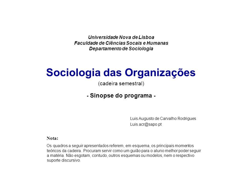 Universidade Nova de Lisboa Faculdade de Ciências Socais e Humanas Departamento de Sociologia Sociologia das Organizações (cadeira semestral) - Sinops