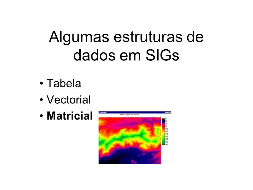 Algumas estruturas de dados em SIGs Tabela Vectorial Matricial