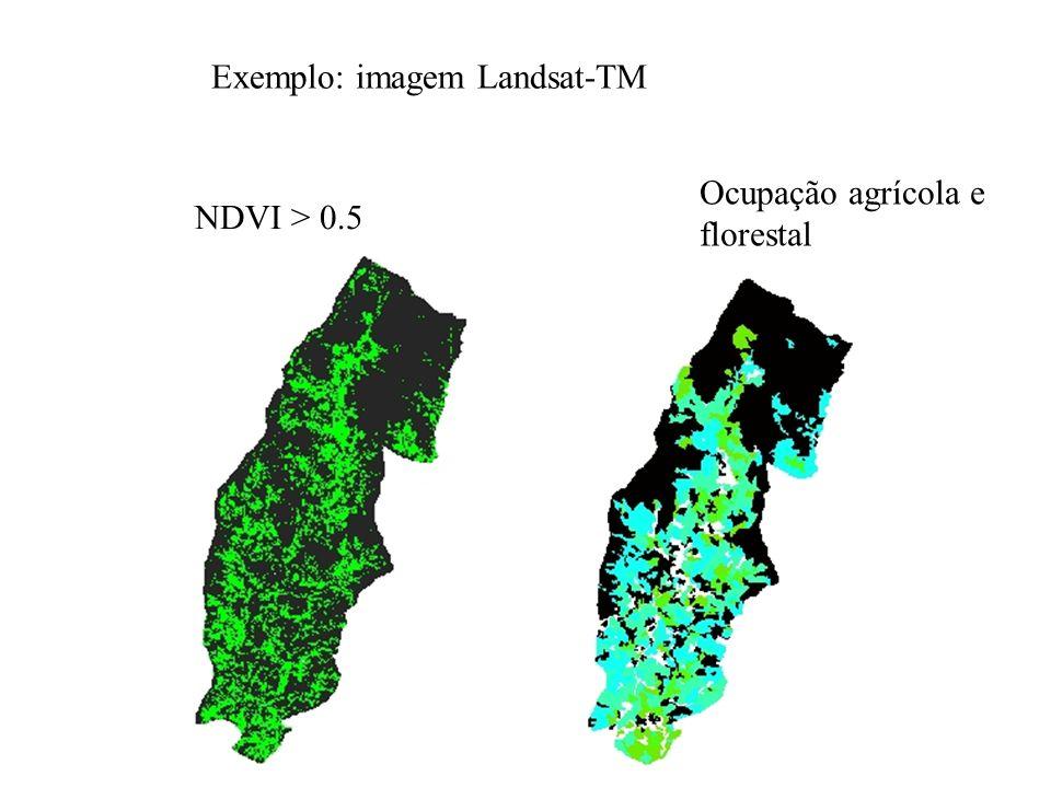 Ocupação agrícola e florestal NDVI > 0.5 Exemplo: imagem Landsat-TM