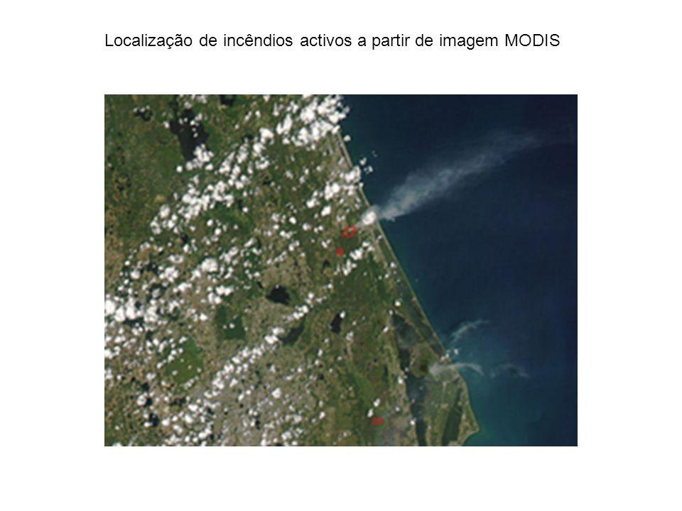 Localização de incêndios activos a partir de imagem MODIS
