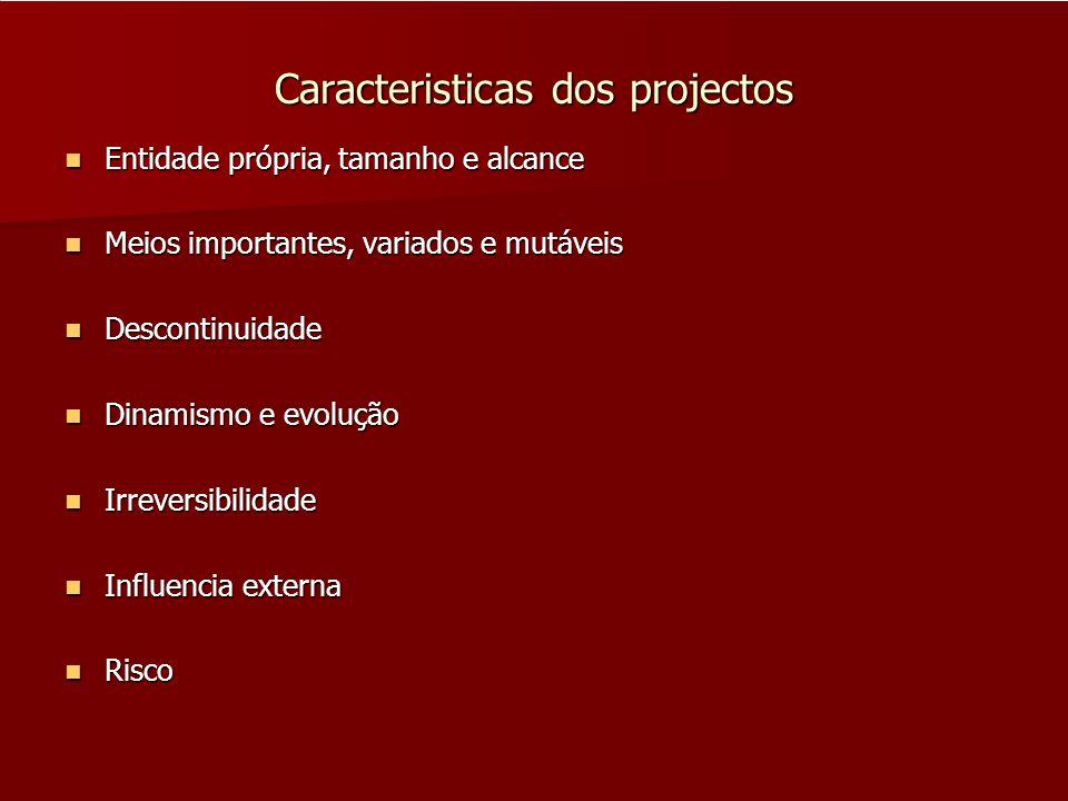 Caracteristicas dos projectos Entidade própria, tamanho e alcance Entidade própria, tamanho e alcance Meios importantes, variados e mutáveis Meios imp