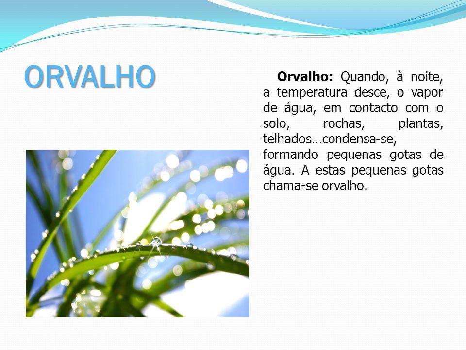 ORVALHO Orvalho: Quando, à noite, a temperatura desce, o vapor de água, em contacto com o solo, rochas, plantas, telhados…condensa-se, formando pequen