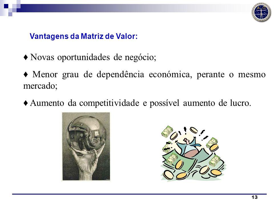 13 Vantagens da Matriz de Valor: Novas oportunidades de negócio; Menor grau de dependência económica, perante o mesmo mercado; Aumento da competitivid