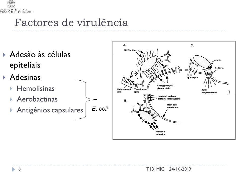 Factores de virulência Adesão às células epiteliais Adesinas Hemolisinas Aerobactinas Antigénios capsulares E. coli 24-10-20136T13 MJC