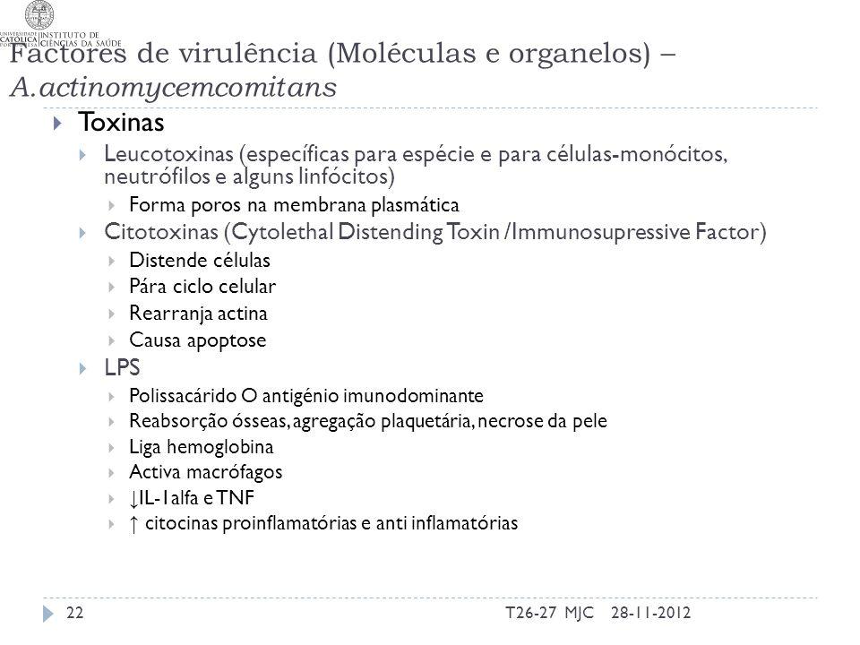 Factores de virulência (Moléculas e organelos) – A.actinomycemcomitans Toxinas Leucotoxinas (específicas para espécie e para células-monócitos, neutró