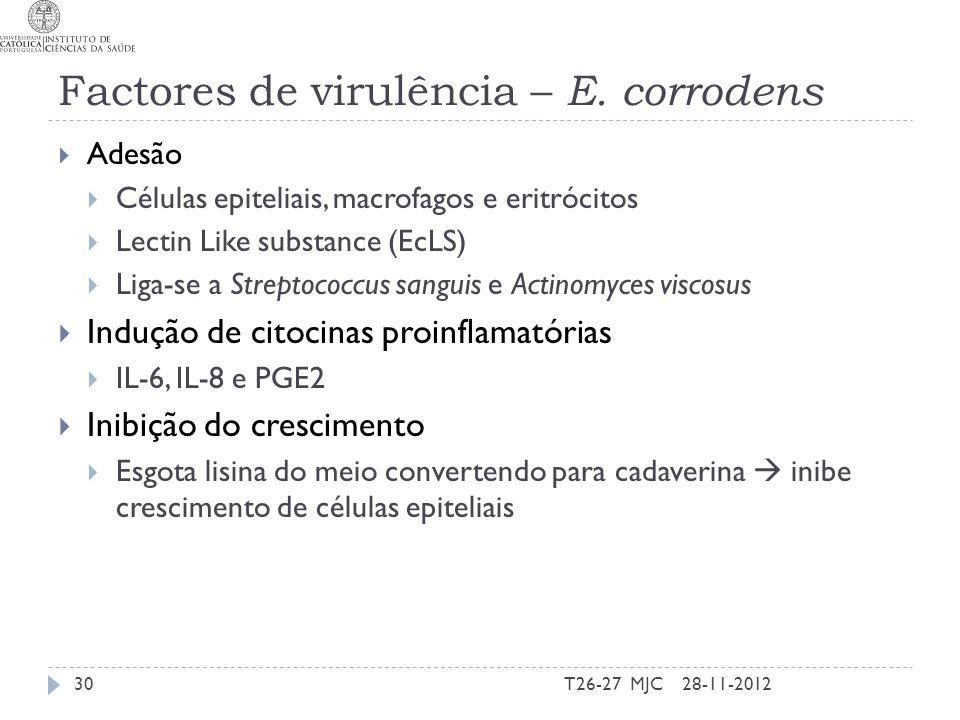 Factores de virulência – E. corrodens Adesão Células epiteliais, macrofagos e eritrócitos Lectin Like substance (EcLS) Liga-se a Streptococcus sanguis