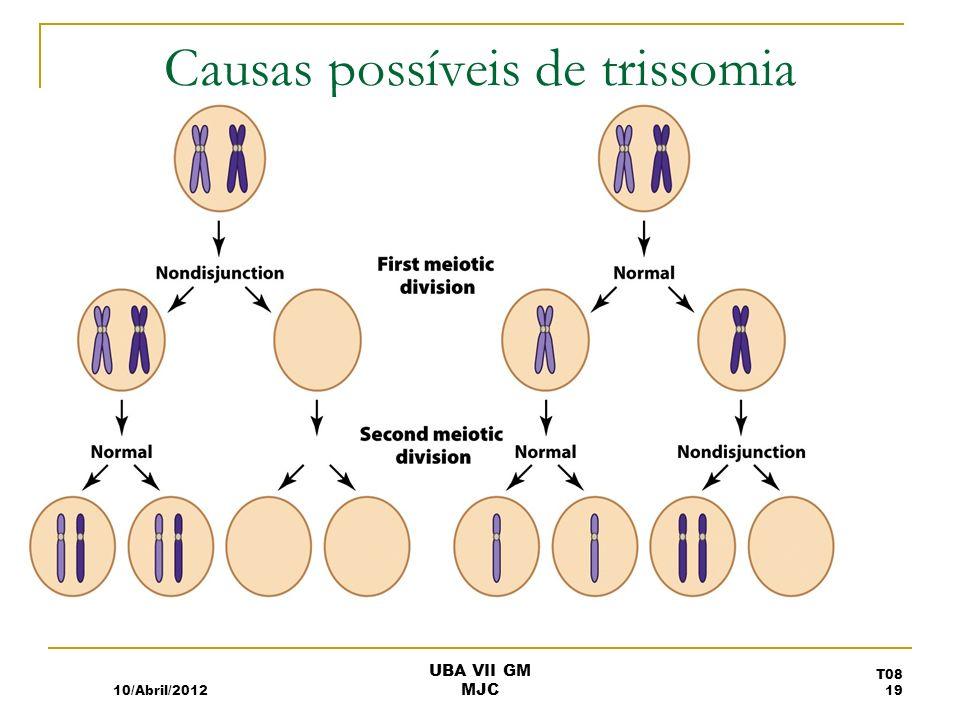 Causas possíveis de trissomia 10/Abril/2012 T08 19 UBA VII GM MJC