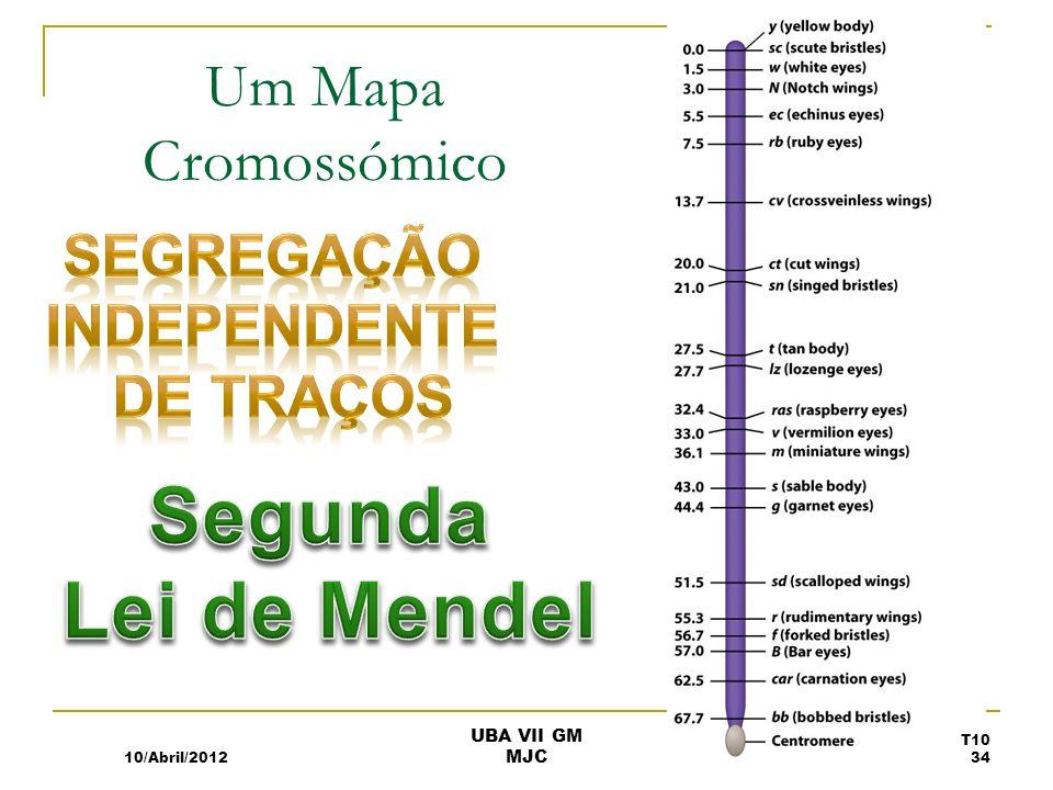 Um Mapa Cromossómico 10/Abril/2012 T10 34 UBA VII GM MJC