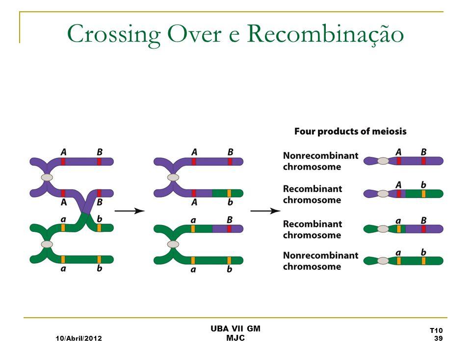 Crossing Over e Recombinação 10/Abril/2012 T10 39 UBA VII GM MJC